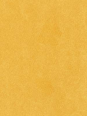 045538 Sensuede Goldenrod by Robert Allen