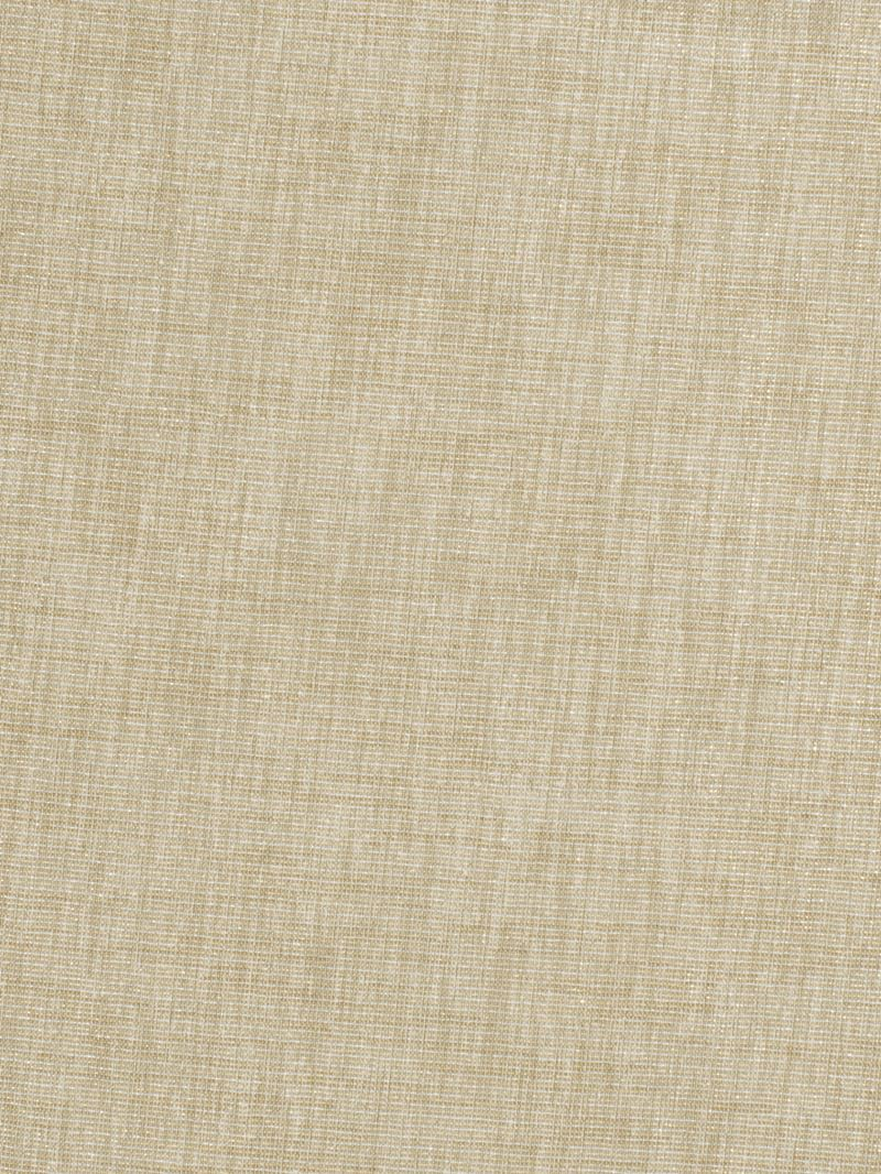 1195004 Baive Linen Metallic by Fabricut