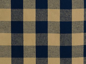 2556 Lumberjack in Denim by Pindler