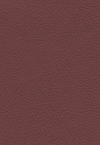 303-1386 Brisa Black Cherry by FSchumacher