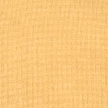 1749814 Polay Maize by Fabricut
