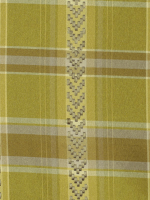 185836 Stitched Check Leek by Robert Allen