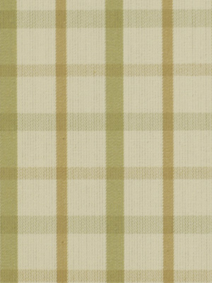 196339 Party Plaid Celadon by Robert Allen