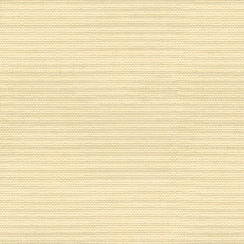 2005206.101 Sailcloth Ivory by Lee Jofa