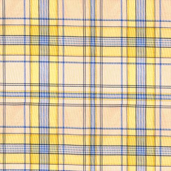 20310M-007 Mayfair Plaid Yellow & Blue by Scalamandre