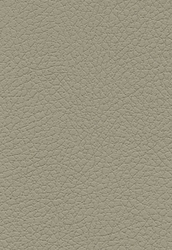 303-3948 Brisa Taupe by F Schumacher