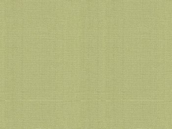 30421.23 Watermill Lichen by Kravet Basics