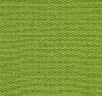 30421.3 Watermill Lime by Kravet Basics