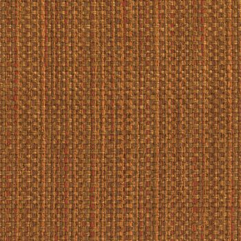 31992.2424 Impeccable Mahogany by Kravet Smart