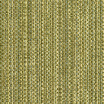 31992.315 Impeccable Spring by Kravet Smart