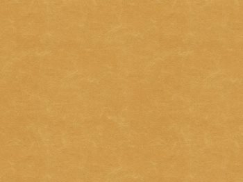 32283.4 Shooting Star Caramel by Kravet Basics