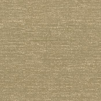 32394.616 by Kravet Couture