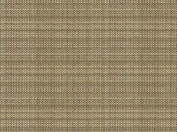 32513.616 Alegria Earth by Kravet Design