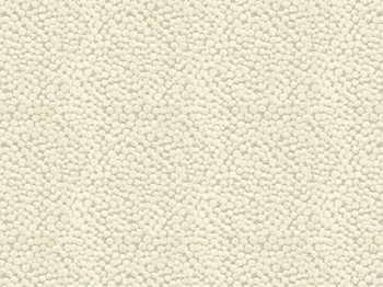 32972.1116 Polka Dot Plush Natural by Kravet Couture