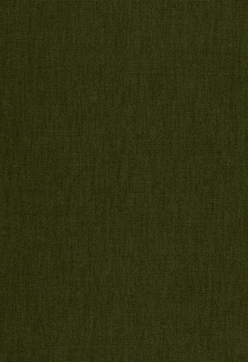 3316067 Hastings Wool Epingle Sage by FSchumacher