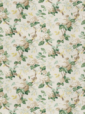 6678301 yoakley cypress by fabricut - Decorator Fabric