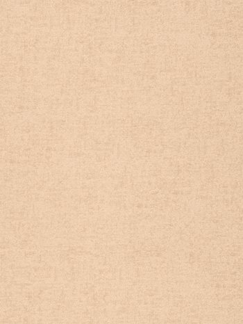 7351301 Bizzle Cloth Felt Ivory by S. Harris
