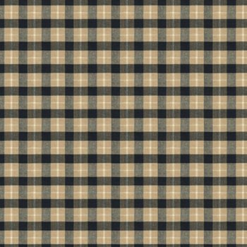 8013111.86 Brunschwig Pld Coal/Tan by Brunschwig & Fils