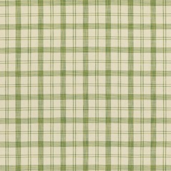 8019103.3 Barbery Check Leaf by Brunschwig & Fils