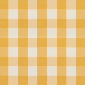 8019105.40 Lackland Check Yellow by Brunschwig & Fils