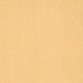 8407819 Elan Velvet Wheat by S. Harris