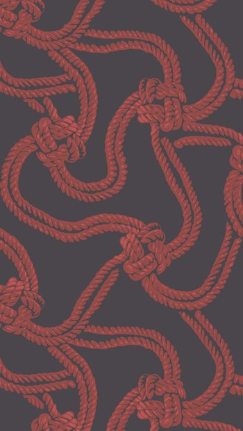93/9033.CS Rope Black & Red by Cole & Son