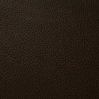 BUC020-BR01 Buckaroo Brown by Pindler