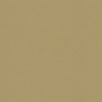 GWF-3211.16 Cabana Sateen Beige by Groundworks