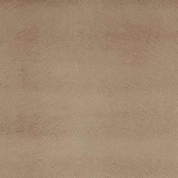 OVE010-BG01 Overton Taupe by Pindler