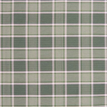 Paladian Plaid Dark Sage by Kasmir