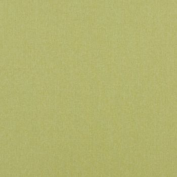 PF50420.755 Carnival Plain Lime by Baker Lifestyle