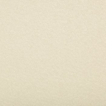 SPARTAN.1611 Spartan Pearl by Kravet Contract
