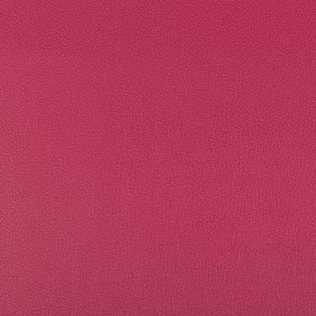 SYRUS.7 Syrus Fuschia by Kravet Contract