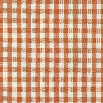 Tanager Gingham Orange by Ralph Lauren