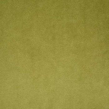 VOL013-GR13 Voltaire Olive by Pindler